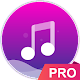 Music player - pro version icon