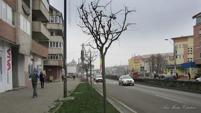 Photo: 2015.12.11 - vazuta de pe Str. Libertatii