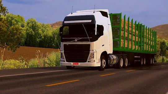 World Truck Driving Simulator MOD (Unlimited Money) 8