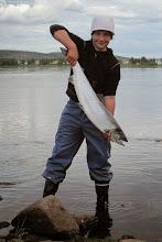 Photo: Torniojoki 2010 Lohi 6,3kg väri 003