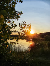 Photo: Sunset behind leaves over a lake at Carriage Hill Metropark in Dayton, Ohio.