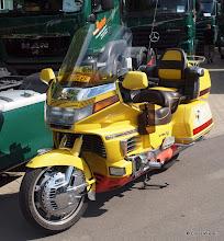 Photo: Gelb regiert die Welt!