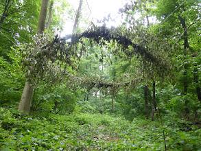 """Photo: Die Land Art Skulptur """"Schwebender Ring"""" zeigt die permanente einengung des natürlichen Lebensraumes, Natur ist am praktischsten für den Menschen, wenn sie sich in 4 Meter Höhe aufhalten würde, so stört sie nicht beim gehen und auch nicht beim fliegen und Landen all zu sehr"""