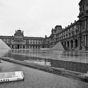 Fly Me to Paris by Ibrahim Johan - Buildings & Architecture Architectural Detail ( paris, le louvre, b&w )