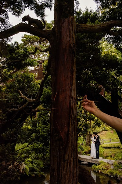 Esküvői fotós Mauricio Arias (arias). Készítés ideje: 13.05.2019