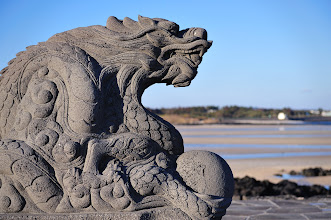 Photo: One more from the Chinese zodiac.