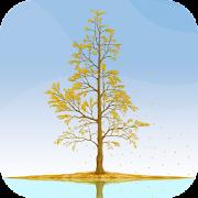 Ginkgo Tree Live Wallpaper