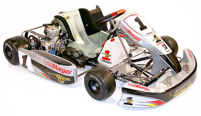 Pegasus Racing Kart