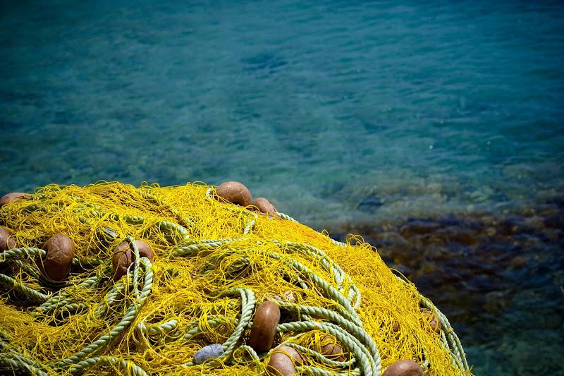 In riva al mare di Pinotiff