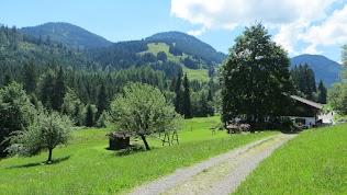 Gunzesried Naturpark Nagelfluhkette Allgäu buhls alpe