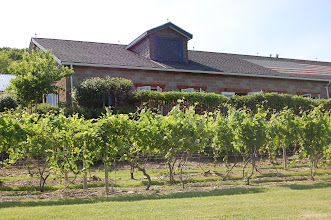 Photo: Bully Hill Vineyards tasting room