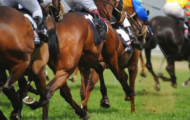 Horse Race Picture: ISTOCK