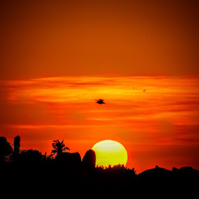 by Dipanjan Ray - Landscapes Sunsets & Sunrises