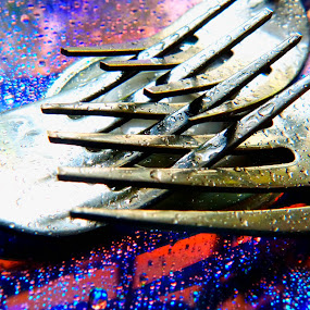 spoons by Rs Photography - Artistic Objects Cups, Plates & Utensils ( digital, prints, desktop, wallpaper, mobile, newart, wallpapers, l, latest )