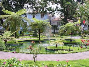 Photo: И еще флора! Ботанический сад Ангры.