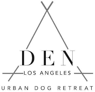 DEN Urban Dog Retreat Los Angeles