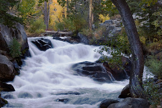 """Photo: """"As long as I live, I'll hear waterfalls and birds and winds sing. I'll interpret the rocks, learn the language of flood, storm, and the avalanche. I'll acquaint myself with the glaciers and wild gardens, and get as near the heart of the world as I can."""" ~John Muir  Lee Vining Creek  #waterfallwednesday curated by +Eric Leslie"""