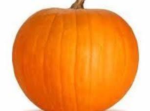 Pumpkin Upside Down Cake