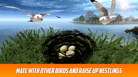 Seagull: Sea Bird Simulator 3D screenshot 3