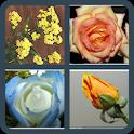 ¿Cúal es la flor? icon