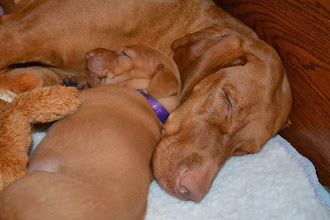 Photo: Love snuggling with my Mommy