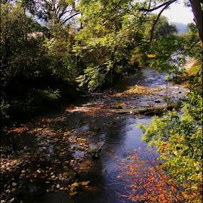 Fairytale by Marta Bednarska - Landscapes Waterscapes ( landscapes )