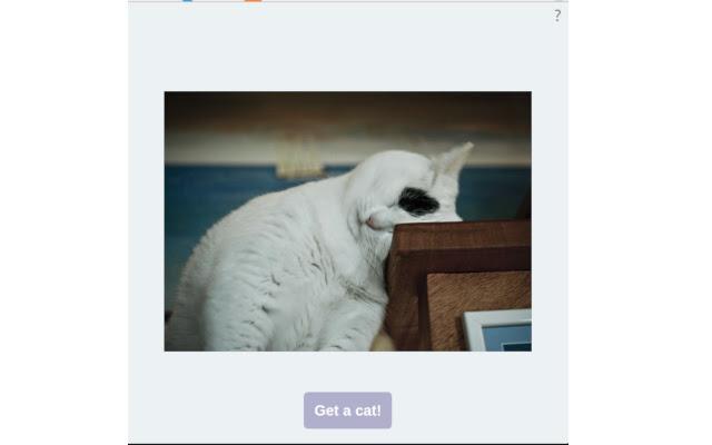 Calm down...get a cat!