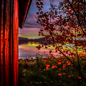 Colorful sunset by Benny Høynes - Landscapes Sunsets & Sunrises ( canon, 5dmk2, bennyhøynes, leafs, tree, sunset, colours, norway, , mood factory, color, lighting, moods, colorful, light, bulbs, mood-lites )