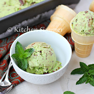 Homemade Mint Chocolate Chip Ice Cream