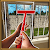 Home Renovate \'N Sale file APK Free for PC, smart TV Download