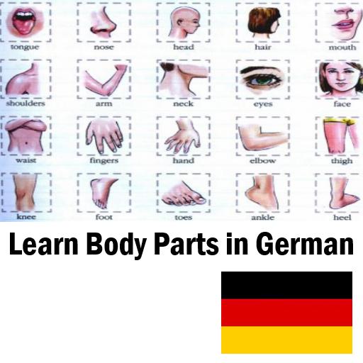 Learn Body Parts in German
