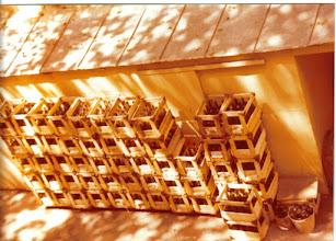 Photo: Muutama tyhjä pullo odotti noutajaa hotellin takapihalla.
