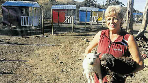 IN GOOD HANDS: Pet Pals Animal Sanctuary founder Sue Kriel and her pets Ozzy and Trixie at the new Wilsonia sanctuary with its colourful cottage kennels which should be completed by mid-September Picture: BARBARA HOLLANDS