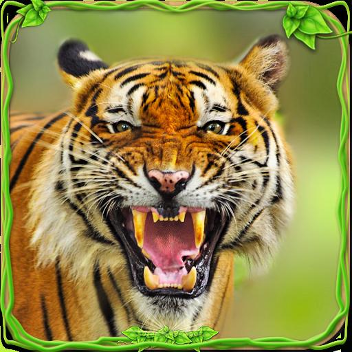 Resultado de imagem para tigre furioso