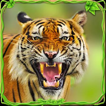 ultimate lion simulator hacked apk