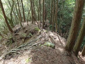 810m東の崩壊斜面の上部を進む