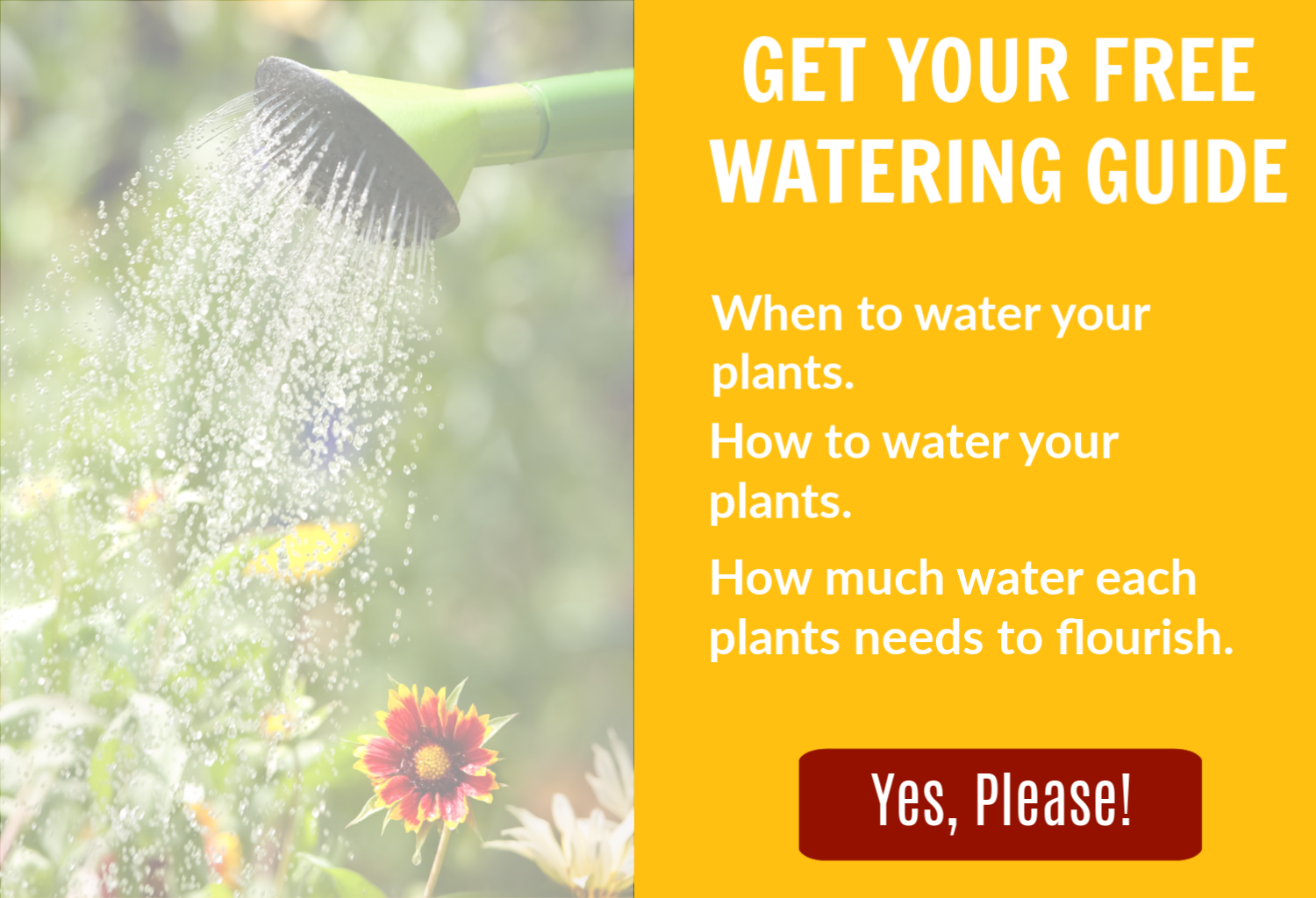 Get your free Watering Guide by clicking here