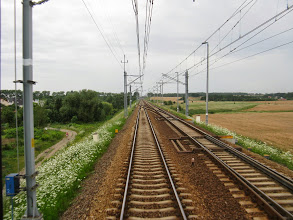 Photo: Chojnów