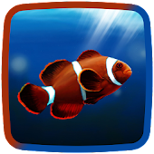 Clownfish Live Wallpaper