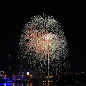 Flowers in the sky by Ansari Joshi - Public Holidays New Year's Eve ( lights, waterscape, fireworks, bridge, nightscape,  )