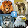 com.qt.animal.birds.reptiles.trivia