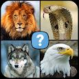 Animals quiz: Mammals, Reptiles, Birds, Fishes