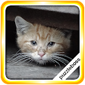 Jigsaw Puzzles: More Kittens icon