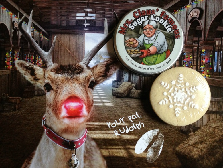 Our package from Santa included signed letters from Santa & Rudolph, a cookie from Mrs. Claus, a jingle bell, some reindeer food, a Santa Stop Here sign for the window and more!