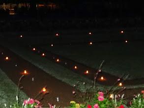 Photo: 1001 lucioles après la pluie