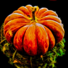 by Dave Walters - Digital Art Things ( nature, lumix fz2500, pumpkin, colors )