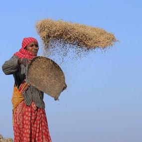 Work nd Speed by Avishek Mazumder - People Portraits of Women