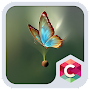 Golden Butterfly Theme APK icon