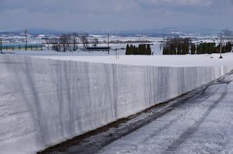 Photo: 北竜町の景色・弥生の三(2014年3月)