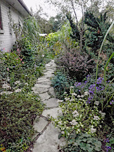 Photo: Our garden isn't for every one - English Cottage style...on steroids. Paths weave through the landscape allowing visitors to experience the garden in a much more interactive way.